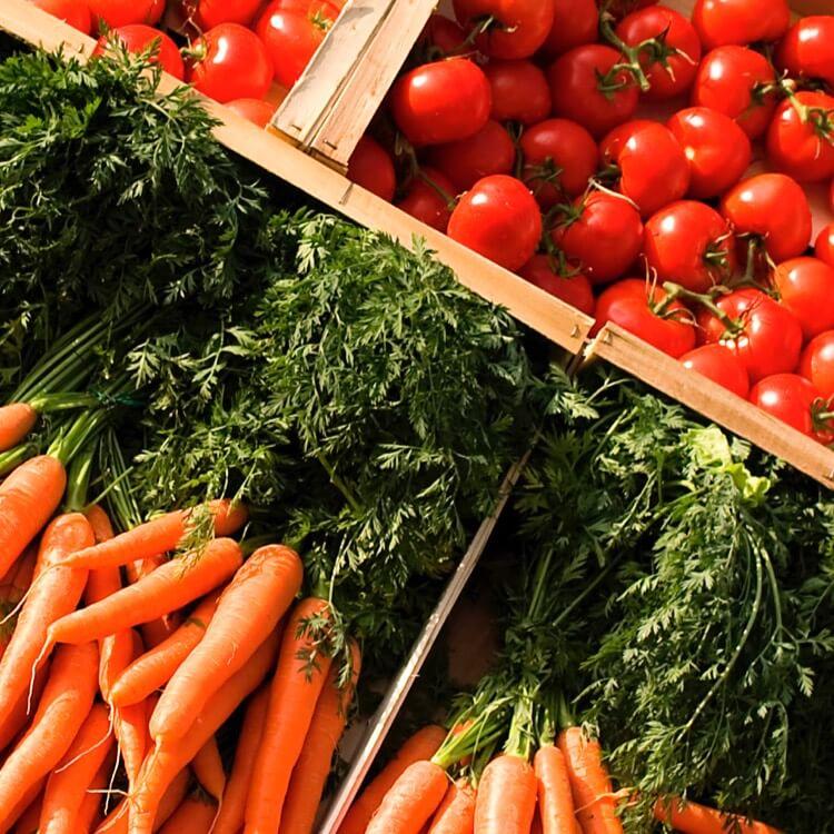 Liste exhaustive des produits bio disponibles à l'offre envoyée à nos clients